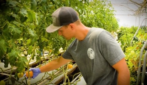 Dayton Valley Aquaponics